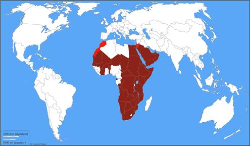 Esp ces vautour oricou torgos tracheliotos for Habitat du monde